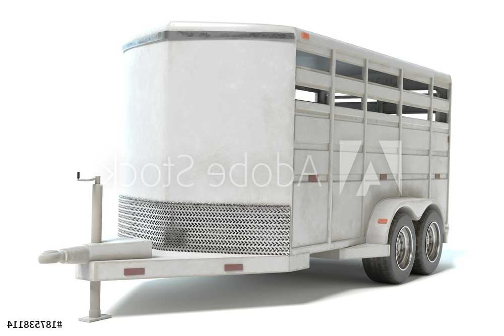 Trailers and Spares - Horse Float Trailer - Illustration